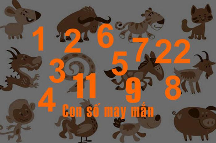 Tổng hợp các con số may mắn theo tuổi của 12 con giáp